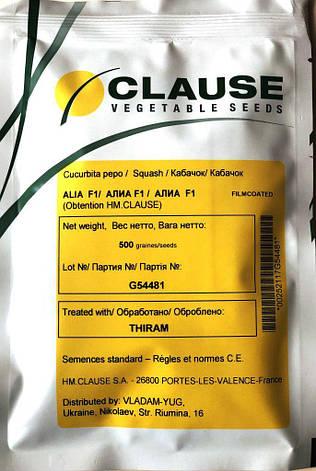 Семена кабачков Алия F1 500 шт., фото 2