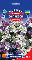 Иберис Эспрессо стелющийся хризантемовидный популярный неприхотливый, упаковка 0,5 г