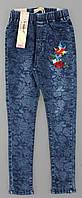 Лосины с имитацией джинсы для девочек Seagull оптом, 134-164 рр. , фото 1