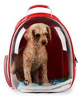 Рюкзак переноска для кошек и собак 63-1, красная