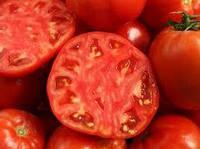 Насіння Томат Джина 0,2 г ТМ Смачний Професійне насіння