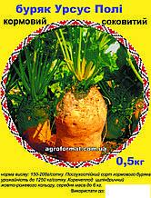 Буряк кормовий Урсус Полі 0,5 кг