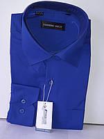 Рубашка мужская Ferrero Gizzi vd-0037 васильковая однотонная классическая с длинным рукавом