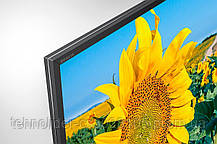 Телевизор Sony KD49XF8096BR2, фото 2