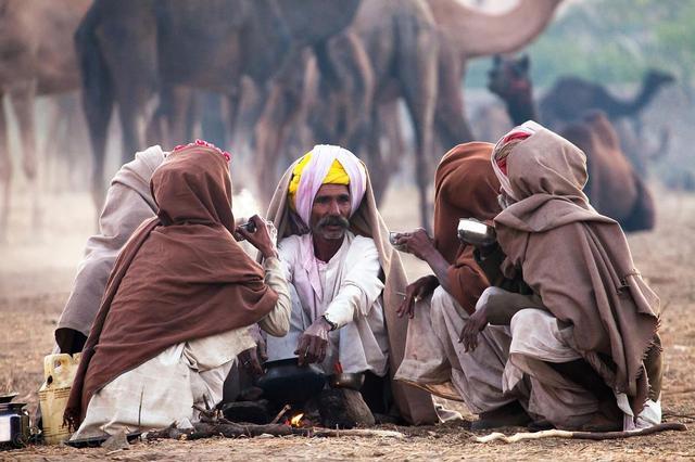 Как пьют кофе в Индии, арабика Индия Плантейшн