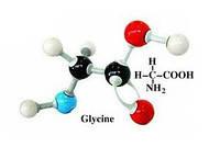 Аминоуксусная кислота (глицин) 25
