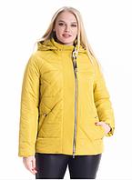 be7ed05d4df Демисезонная куртка женская весна-осень деми в большом размере недорого  Украина р. 46-