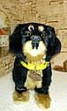 🐶 Интерактивная собака собачка щенок песик живая игрушка на поводке видео: ПОДАРКИ НА ДЕНЬ РОЖДЕНИЯ, фото 3