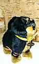 🐶 Интерактивная собака собачка щенок песик живая игрушка на поводке видео: ПОДАРКИ НА ДЕНЬ РОЖДЕНИЯ, фото 5