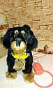 🐶 Интерактивная собака собачка щенок песик живая игрушка на поводке видео: ПОДАРКИ НА ДЕНЬ РОЖДЕНИЯ, фото 8