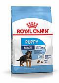 Для щенков крупных пород до 15 месяцев Royal Canin Maxi Puppy, 4 кг, корм
