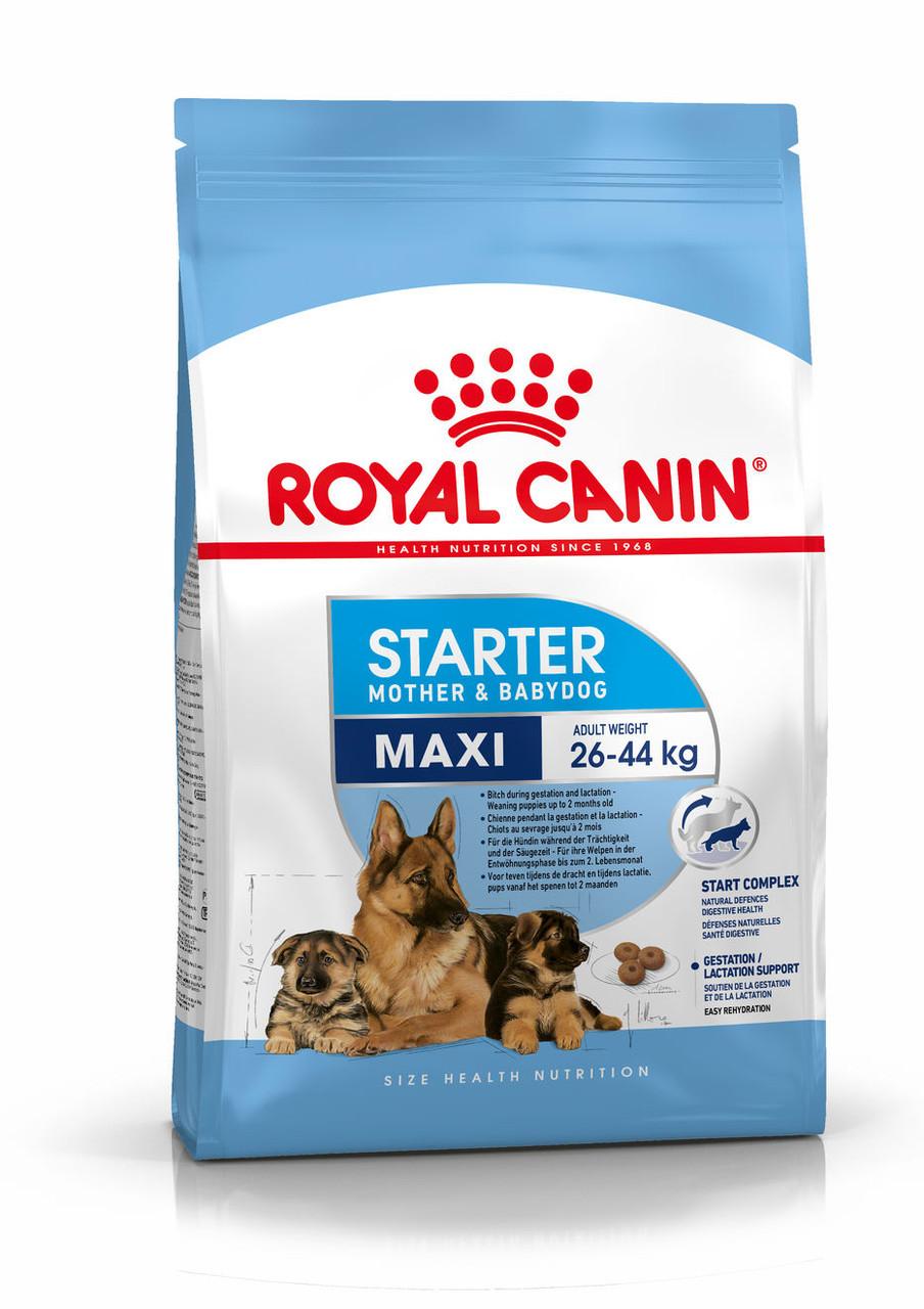 Для щенков крупных пород в период отъема до 2 месяцев Royal Canin Maxi Starter, 4 кг