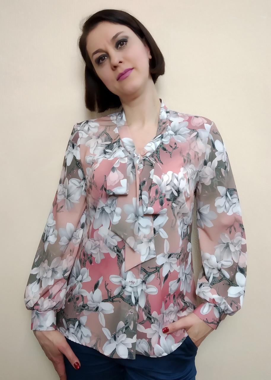 813a0efb9b8 Женская блузка с длинным рукавом и бантом Бл02  продажа