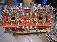 Головка блока цилиндра МТЗ-80 в сборе Д-240, 243