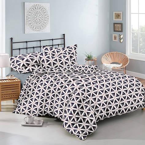 Двуспальный комплект постельного белья евро 200*220 хлопок  (11166) TM KRISPOL Украина, фото 2
