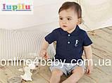 Футболка тенниска Lupilu на мальчика  2-6 мес, рост 62/68, фото 2