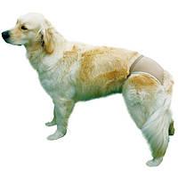 Трусы для собак Trixie, бежевые, 40-49см, 23403