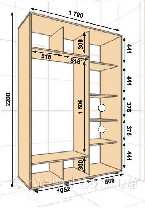 Шкаф-купе 1700*600*2200, 2 двери (Алекса)