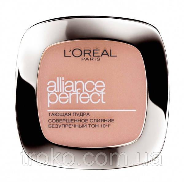 L'OREAL Alliance Perfect Пудра компактная N2 - Vanilla