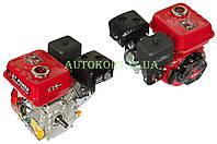 Двигатель м/б   168F   (6,5Hp)   (полный комплект) (вал Ø 20мм, под шпонку)   DAOTONG