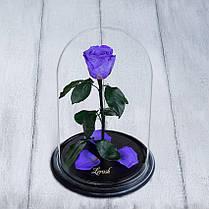 Стабілізована троянда в колбі Lerosh - Standart 33 см, Ліловий