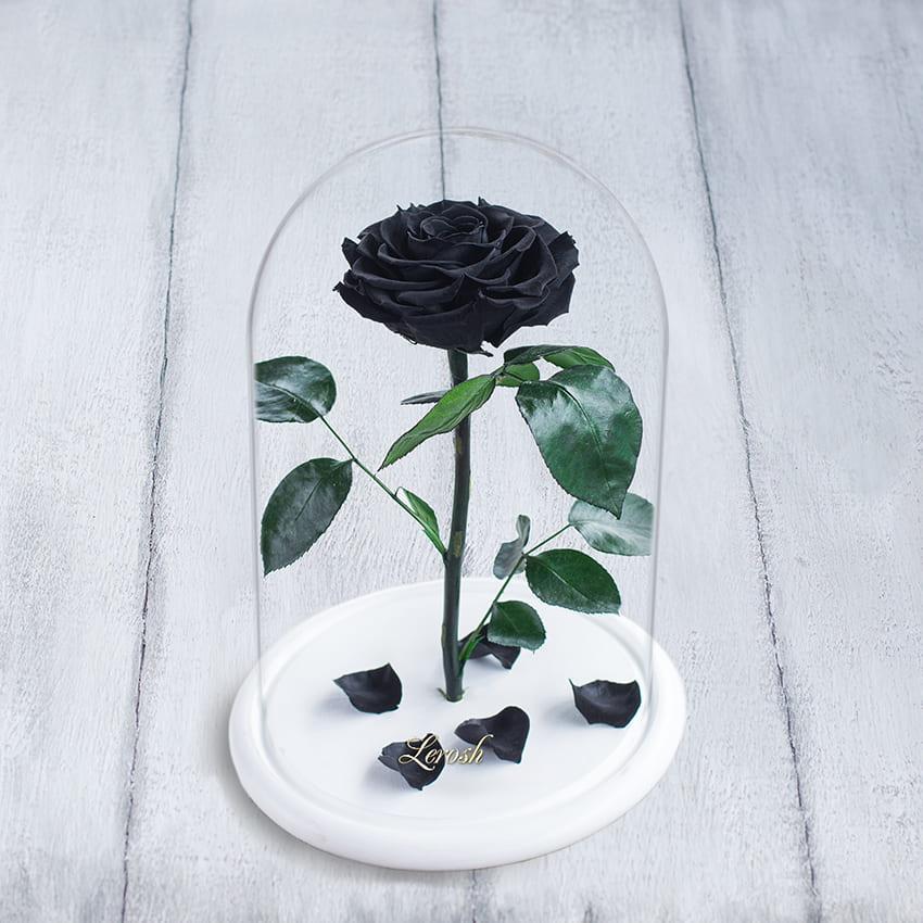 Стабілізована троянда в колбі Lerosh - Premium+ 33 см, Чорний (Б)