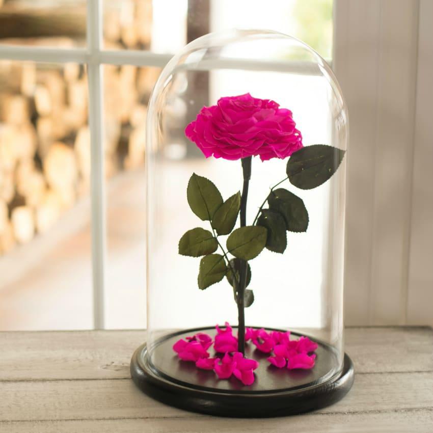 Стабилизированная роза в колбе Lerosh - Lux 33 см,  раскрытый Ярко розовый