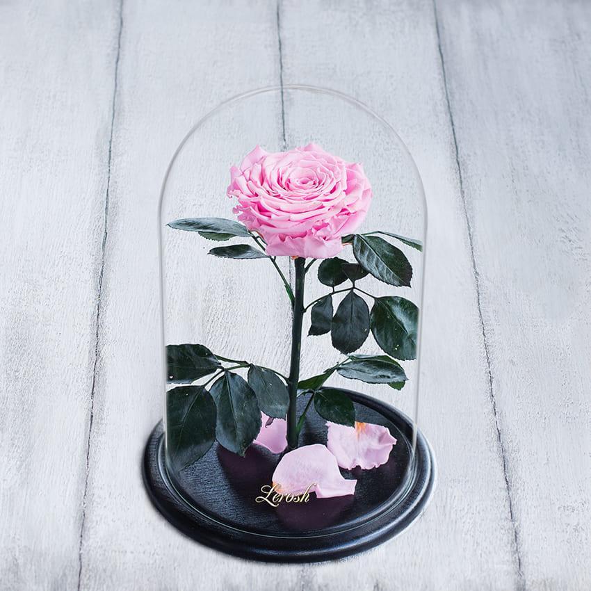 Стабілізована троянда в колбі Lerosh - Lux 33 см, Рожевий