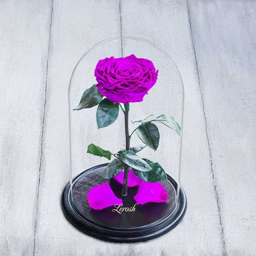 Стабилизированная роза в колбе Lerosh - Lux 33 см,  Фиолетовый