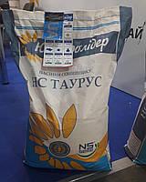 Подсолнечник НС Таурус (Стандарт)