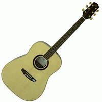 Акустическая гитара SX DG180/NA
