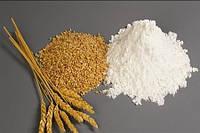 Глютен пшеничный сухой