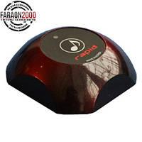 Кнопка вызова официанта RAPID HCM-250