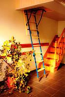 Лестница чердачная ТРИАНС 120x63х280 (Украина)