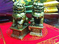 Фигурки из полимеров Собаки Фу