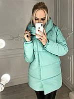 Женская курточка зефирка в категории куртки женские в Украине ... d850a5d85988d
