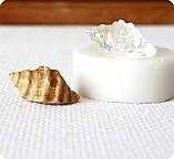 Силиконовый молд на копию натуральной ракушки, фото 2