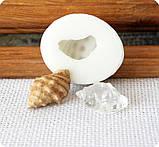 Силиконовый молд на копию натуральной ракушки, фото 4