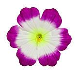 Пресс цветок Мальва 13 см, фото 2