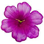 Пресс цветок Мальва 13 см, фото 4