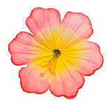 Пресс цветок Мальва 13 см, фото 3