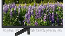 Телевизор Sony KD55XF7096BR2, фото 2