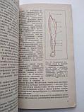 Восстановление работоспособности с помощью массажа и бани А.Н.Буровых, фото 7
