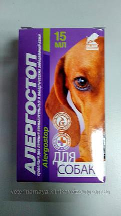 """Суспензия от аллергии """"Алергостоп"""" 15мл. для собак.(для перорального применения)., фото 2"""