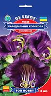 Кобея Кафедральные Колокола фиолетовая вьющеяся лиана до 4 м цветет до заморозков, упаковка 4 шт
