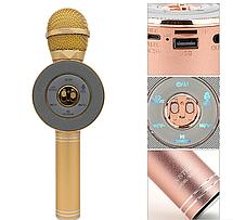 Караоке микрофон Wster WS-668, фото 3
