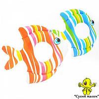 Коло 59223 Тропічні рибки, 83-81 см., 2 кольори, 3-6 років  - CM00491
