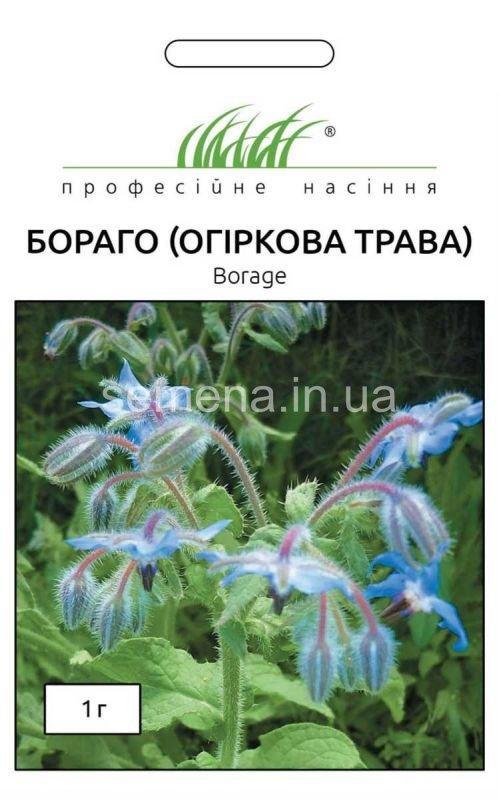 Насіння Бораго (огіркова трава) 1г  Hem Zaden