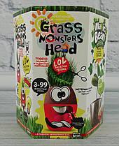 Набор для креативного творчества Grass Monsters Head GMH-01-04 Danko-Toys Украина