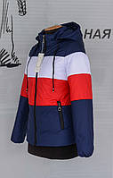 Спортивная женская демисезонная куртка 40-50 р-р